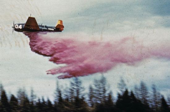 USForServ TBM#04 N104Z_1959_F2B-04_crop