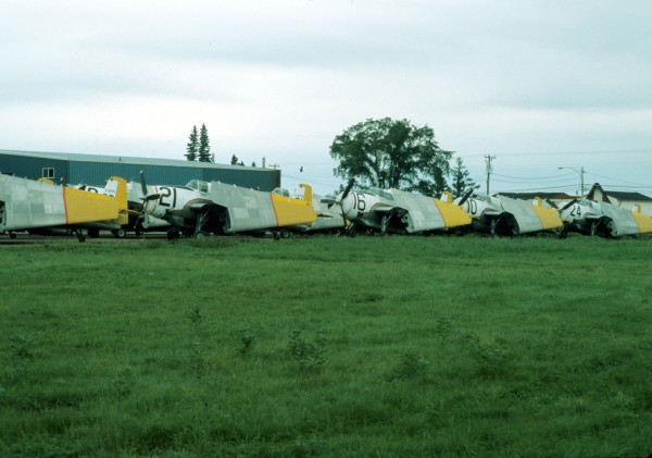 TBM fleet stored at FPL, 1980.