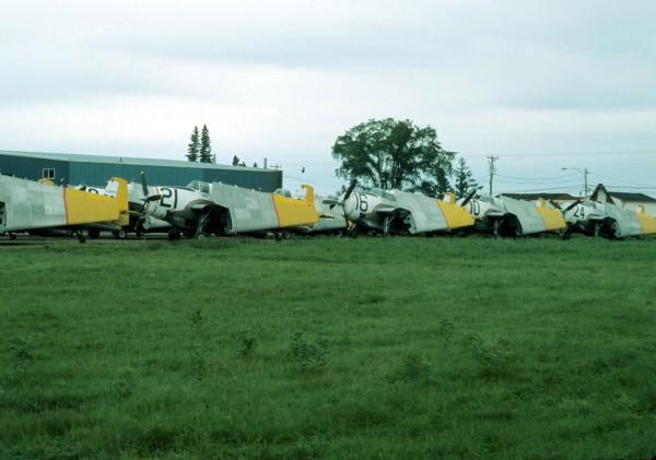 TBM fleet stored at FPL, 1980.