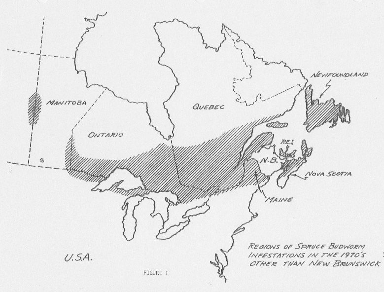 spruce budworm and spray aircraft in the new brunswick context 1976 Chev Nova regions of sbw infestation 1970s