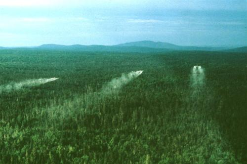 TBM aerial spray, Jun 1986